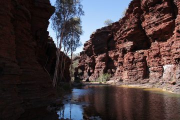 karijini, karijini national park, mt augustus, tours to karijini, tours to mt augustus, tom price, coral bay, aussie redback tours, seniors tours of wa