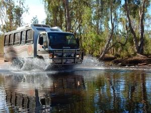 Albert, Aussie Redback Tours, Drysdale River, Kalumburu Rd, Drysdale Station, Kimberley