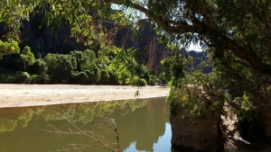 Windjana Gorge, Kimberley, Gibb River, Lennard River, Aussie Redback Tours,
