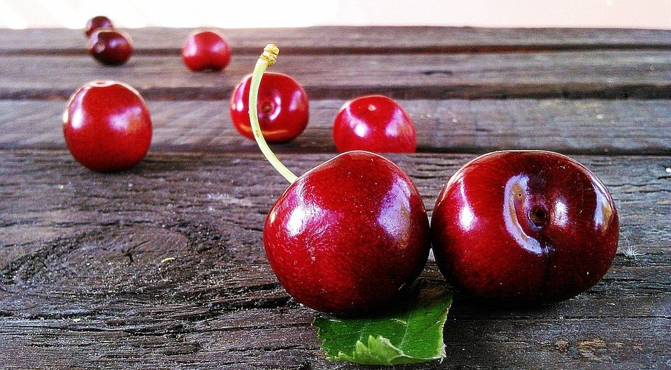 manjimup cherry festival, aussie redback tours, tours to the manjimup cherry festival, tours for seniors, tours to wa for seniors, wa tours for pensioners