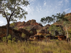 kimberley, kimberley tours, tours of the kimberley, tours for seniors to the kimberley, seniors tours of the kimberley, kimberley western australia